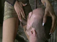 TS Seduction: The First Ever TS Gang Bang On TS Seduction – The Gangster Orgy